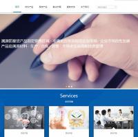 宽屏简洁大气的物联网公司企业官网网站模板整站下载